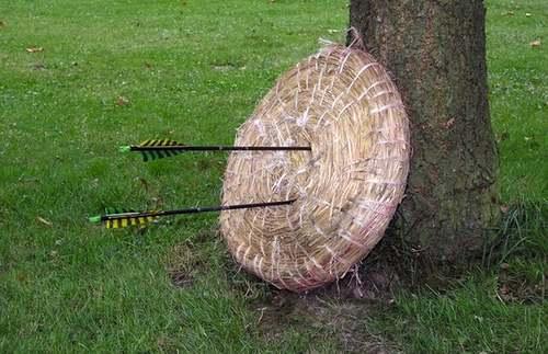 Eine Zielscheibe mit Pfeilen