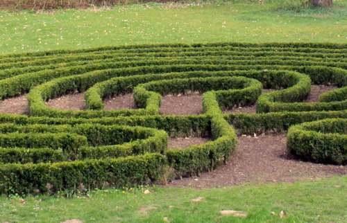 Begehbares Buchsbaumlabyrinth im Klostergarten